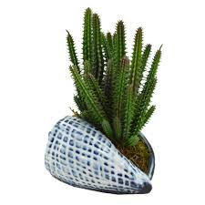 succulent planter decoration modern balcony landscape succulent planter cute size