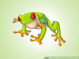 how to diagnose your tree frog s illness 7 steps with pictures