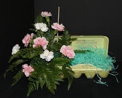 florida federation of garden clubs classes