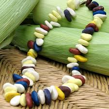 pocahontas inspired corn necklace craft craft activities and