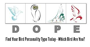 is online high school right for me dope bird 4 personality types test printable online version
