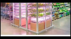 indoor garden inside a supermarket youtube