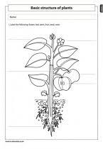 living and non living things 2 natural science worksheet