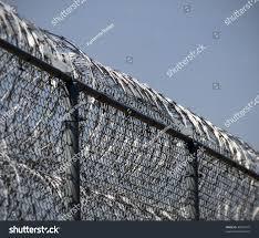 concertina wire fence dolgular com