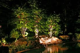 landscape lighting for trees lightings and ls ideas