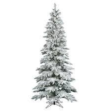 remarkable decoration white tree winter park pre