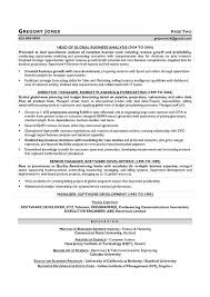 Resume Writers Houston Cfo Resume Sample Resume Sample For A Cfo Cfo Sample Resume