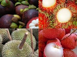 lychee fruit inside fruits of thailand bangkok beyond blog