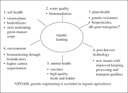 strategies and models for agricultural sustainability in