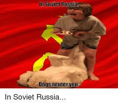 In Soviet Russia Meme - in soviet russia dogs neuter vou in soviet russia dogs meme on