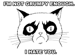 Grumpy Face Meme - grumpy cat art meme by adamtupper on deviantart