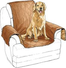 Dog Chair Covers 42 Best Dog Gear For Scout U0026 Friends Images On Pinterest Dog