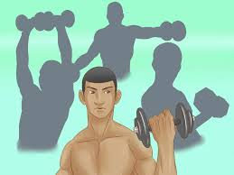 Chest And Shoulder - 4 ways to build shoulder muscles wikihow