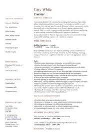 sales assistant cv exle shop store resume retail curriculum