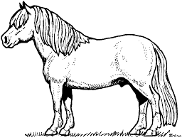 lovely coloring page of a horse 96 on free colouring pages with
