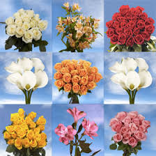wedding flowers packages white callas alstroemeria bouquet fillers