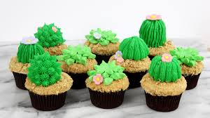 how to make succulent cupcakes youtube