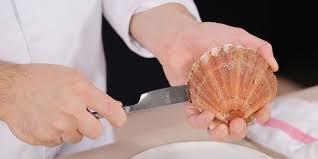 comment cuisiner les jacques coquilles jacques à la bretonne recettes femme actuelle