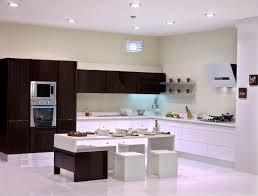 lavish modern kitchen with white scheme also dark plywood cabinets