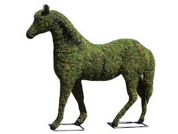 Topiaries Plants - how to make a topiary animal live topiary plants guide yard