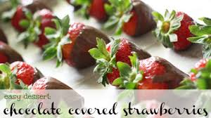 covered strawberries chocolate covered strawberries the pretty bee