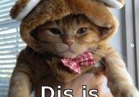 Wanna Bet Meme - nice wanna bet meme diddy bet awards 2015 memes kayak wallpaper