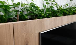 plants as a part of the interior rules architects