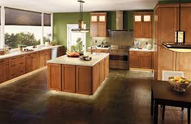 Kitchen Cabinets With Lights by Kitchen Cabinet Lighting U2013 Home Design And Decorating