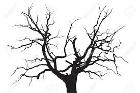 gloomy dead oak tree royalty free cliparts vectors and stock