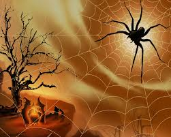 scary spider wallpaper wallpaper hd