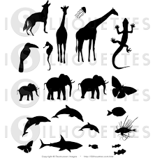royalty free stock silhouette designs of birds