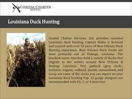 hunting guides in louisiana louisiana duck hunting guide focusky