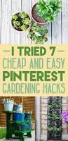 i tried 7 pinterest garden hacks for beginners
