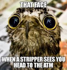 Potoo Bird Meme - potoo meme by benthedj82 memedroid