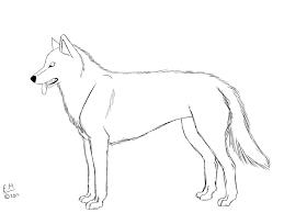 alaskan husky character sheet by silverwolf3746 on deviantart