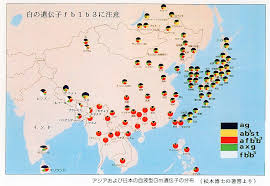 Hmong Map Origins Of The Yayoi People Heritage Of Japan