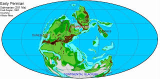 lecture 6 plate tectonics