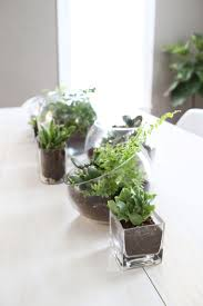 terrarium planter table runner u2013 a beautiful mess