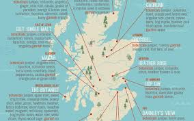 Map Of Glasgow Scotland Are The Best Gins Made In Scotland New Ginfographic Maps Out