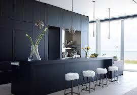 interiors of kitchen 30 best black kitchen cabinets kitchen design ideas with black