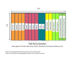 raised vegetable garden layout 4x8 home outdoor decoration