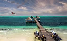 cuba beach birds sea sand walkway hut bench turquoise