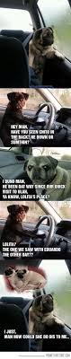 Sad Pug Meme - funny sad thinking pug meme on imgfave den første mapzen ever