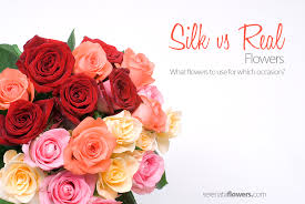 Real Flowers - silk vs real flowers pollennation