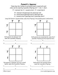 mendel u0027s experiments lessons tes teach