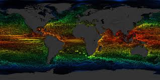 Current Temperature Map Svs Global Sea Surface Currents And Temperature
