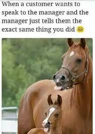 Retail Memes - 24 best retail memes images on pinterest memes humour funny