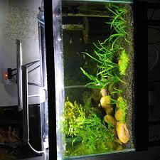 10 gallon planted tank led lighting led lighting for 10 gallon the planted tank forum