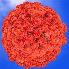 bulk roses coral roses in bulk fresh show girl roses global
