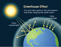 global warming causes and effects 18 global warming facts causes effects solutions debate